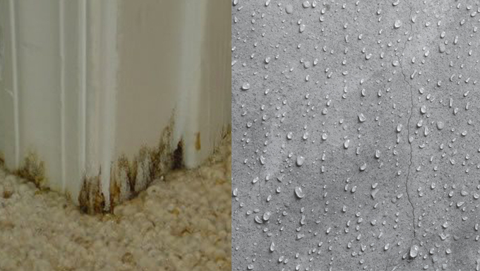 Concrete Sweating: What is it and How to Prevent it