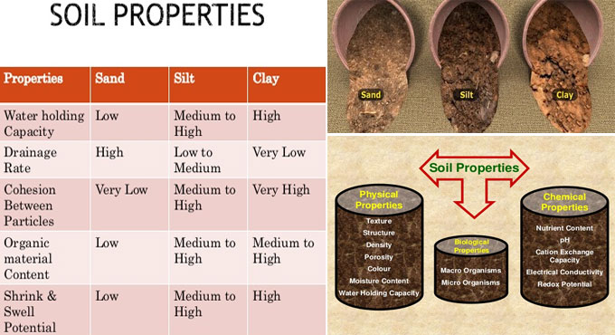 Compaction Effects On Soil Structure