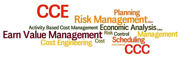 Certified Cost Engineering/Consultant