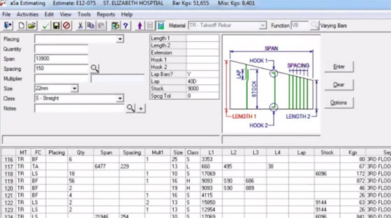 Software for Reinforcement Estimation Construction